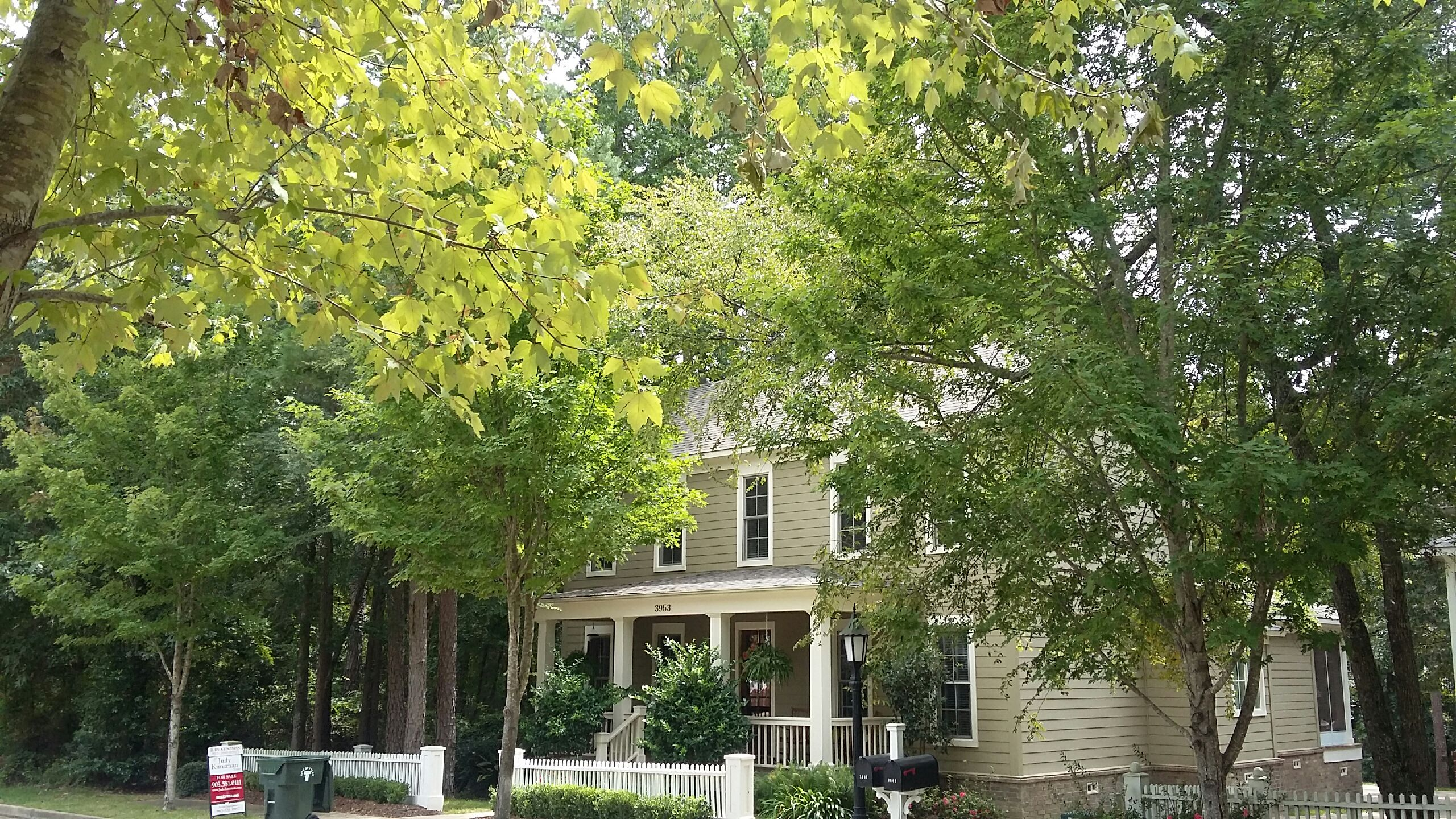 House And Home: A well b uilt house in a wooded area of the suburbs.
